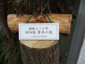 和田家寄贈の回向柱